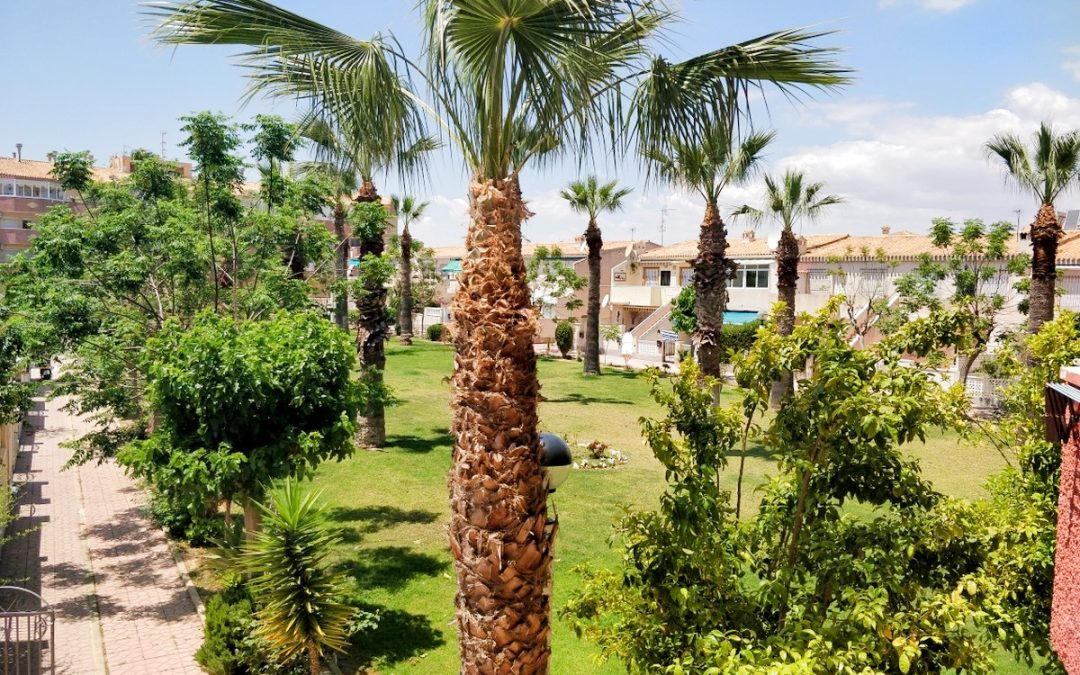 One bed, one bath apartment with private terrace in La Regia, within walking distance of Cabo Roig